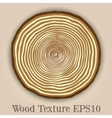 wood texture background with tree rings vector image