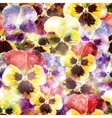 Seamless pattern pansy flowers EPS10 vector image