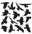 Crow Silhouette set 01 vector image