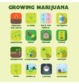 Marijuana growing icon set vector image