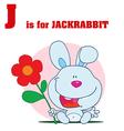 Jack rabbit cartoon vector image