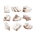 Cheese sketch collection vector image