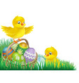 easter chicks and egg basket vector image
