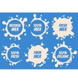 Splash and blot milk labels set Design vector image