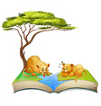 Book of lions living by the river vector image vector image