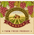 Vintage colorful grapes harvest label vector image