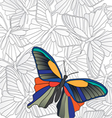 banner butterflies vector image vector image