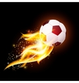 Football Ball With Fire vector image