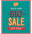 Big sale typographic design vector image