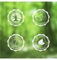Eco Vintage Labels Bio template set on blurred vector image