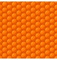 Seamless pattern with bee honeycombs and honey vector image
