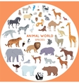 Set of World Animal Species vector image