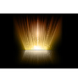 flare gold mirror vector image vector image