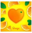 Oranges art composition vector image