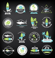 Surfing summer icons labels collection vector image