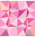 Dynamic Angles Pink vector image