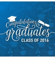 on seamless graduations vector image