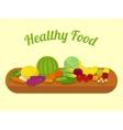 Healthy food cartoon vector image