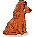 cocker spaniel dog cartoon vector image vector image