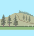 fir trees set and their silhouettes vector image