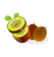 icon kiwi vector image vector image