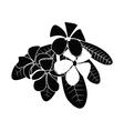 frangipani silhouettes for design vector image