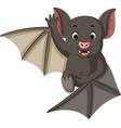 bat cartoon vector image