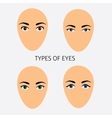 Set of woman eyes types flat vector image