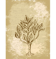 tree sketch vintage background vector image vector image