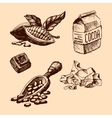 cocoa hand drawn sketch vector image