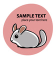 Cute chunchilla vector image vector image