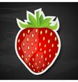 Strawberry on black background vector image