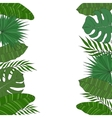 Vertical frame of palm tree leaves Tropical card vector image