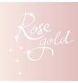 rose gold backround lettering vector image