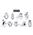 bundle of baby boy and girl penguins wearing vector image