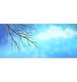 Sky Tree Branches Panoramic Banner vector image vector image