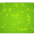 Green foliage vector image