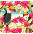 Exotic tropical card with toucan vector image