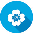 Chamomile forget-me-not flower icons Floral vector image