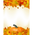 Colorful autumn card leaves with Pumpkin EPS 8 vector image