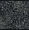 spider web abstract halloween background vector image