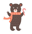 closeup of bear with scarf vector image