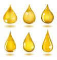 Yellow drops vector image