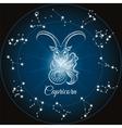 Zodiac capricorn sign vector image