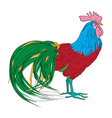 fantastic rooster vector image