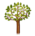 tree with glossy leaves vector image