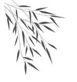 bamboo leaves vector image
