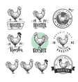 Rooster Chicken product logotypes set Hen meat vector image
