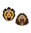 Cartoon lions head vector image