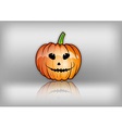 pumpkin reflect grey vector image